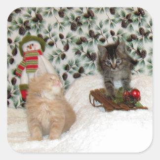 Katze, Kätzchen, Weihnachten, Rettung, Foto Quadratischer Aufkleber