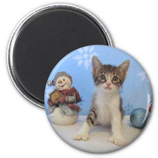 Katze, Kätzchen, Weihnachten, Rettung, Foto Runder Magnet 5,7 Cm