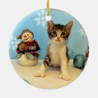 Katze, Kätzchen, Weihnachten, Rettung Keramik Ornament