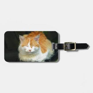 Katze Kofferanhänger