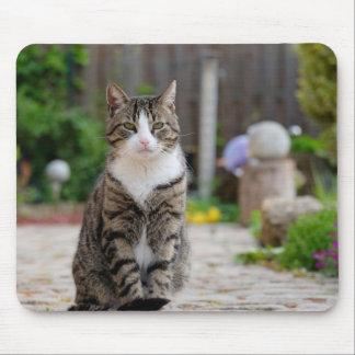 Katze Mauspads