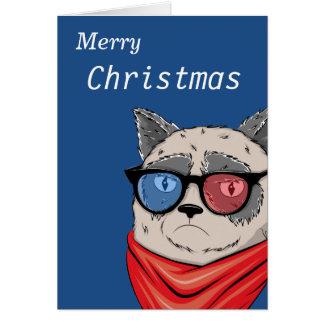 Katze Memes-House-