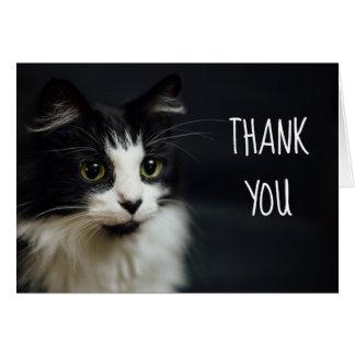 Katze, Miezekatze, danke kleines Notecard Karte
