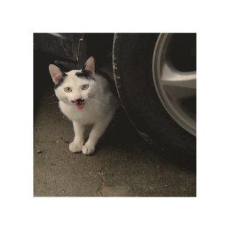 Katze mit dem Schnurrbart Holzdruck