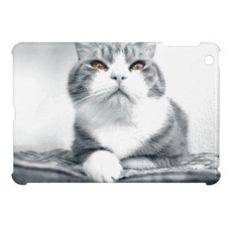 Katze mit orange Power-Augen iPad Mini Hülle