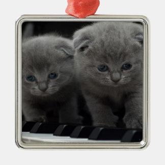 Katze Quadratisches Silberfarbenes Ornament