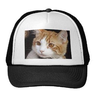 Katze Retrokultmützen