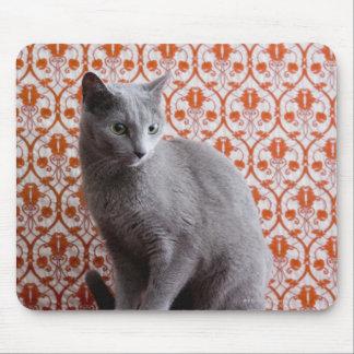 Katze (russisches Blau) und Tapetenhintergrund Mauspad