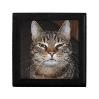 Katze Schmuckschachtel