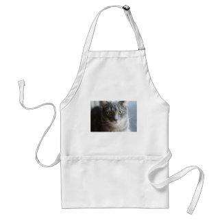 Katze Schürze