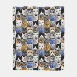 Katze stellt Collagen-Decke gegenüber Fleecedecke