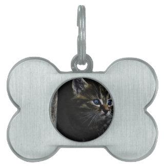 Katze Tiermarke