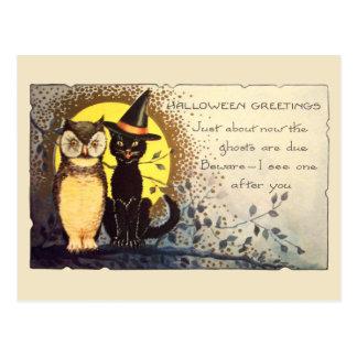 Katze und Eule in Vintager Halloween-Postkarte Postkarte