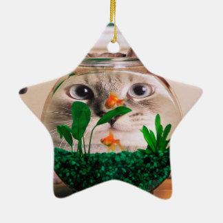 Katze und Fische - Katze - lustige Katzen - Keramik Stern-Ornament