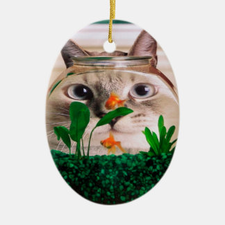 Katze und Fische - Katze - lustige Katzen - Ovales Keramik Ornament