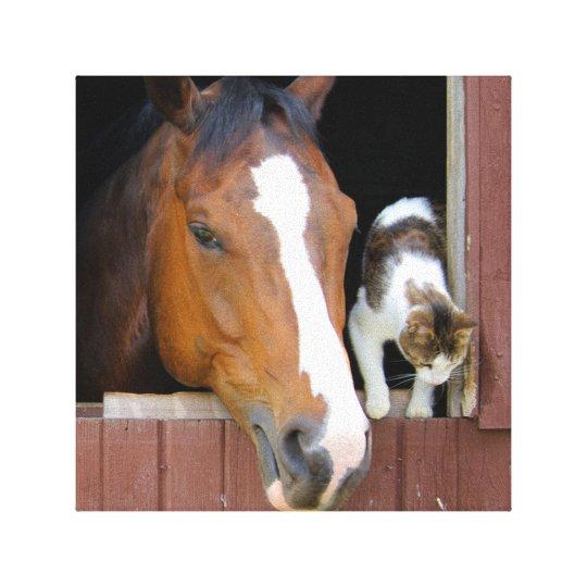 Katze und Pferd - Pferderanch - Pferdeliebhaber Leinwanddruck