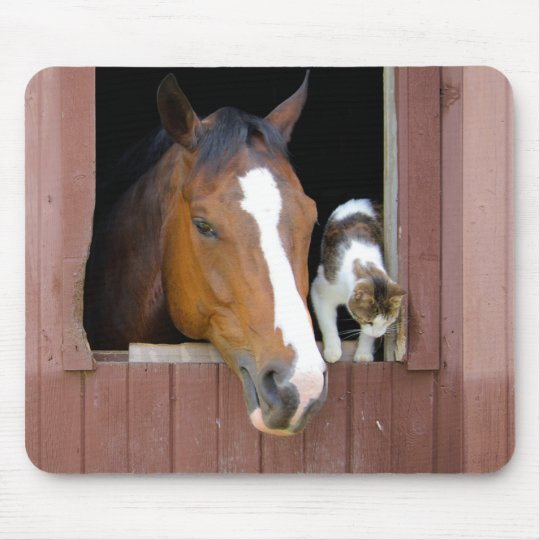Katze und Pferd - Pferderanch - Pferdeliebhaber Mauspad