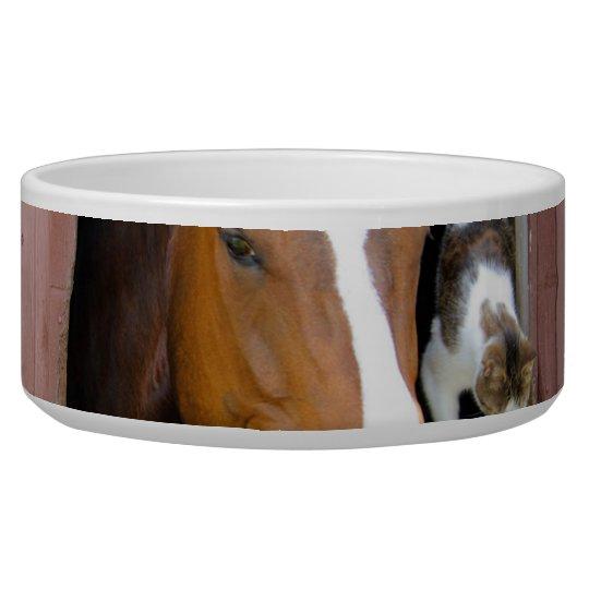 Katze und Pferd - Pferderanch - Pferdeliebhaber Napf