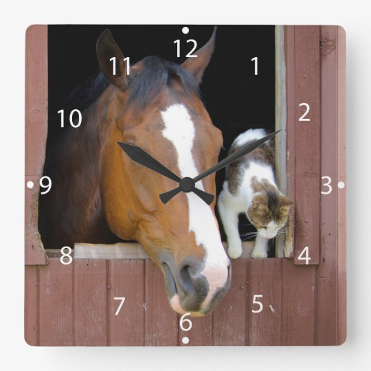Katze und Pferd - Pferderanch - Pferdeliebhaber Quadratische Wanduhr