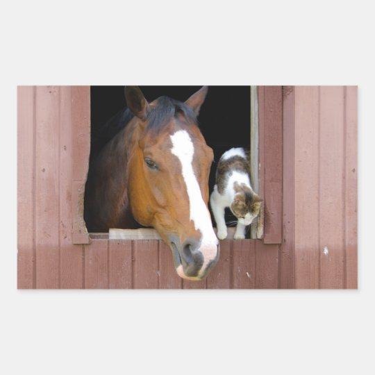 Katze und Pferd - Pferderanch - Pferdeliebhaber Rechteckiger Aufkleber