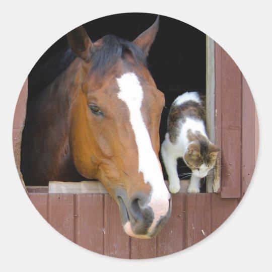Katze und Pferd - Pferderanch - Pferdeliebhaber Runder Aufkleber