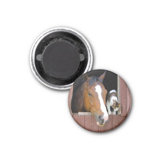 Katze und Pferd - Pferderanch - Pferdeliebhaber Runder Magnet 3,2 Cm