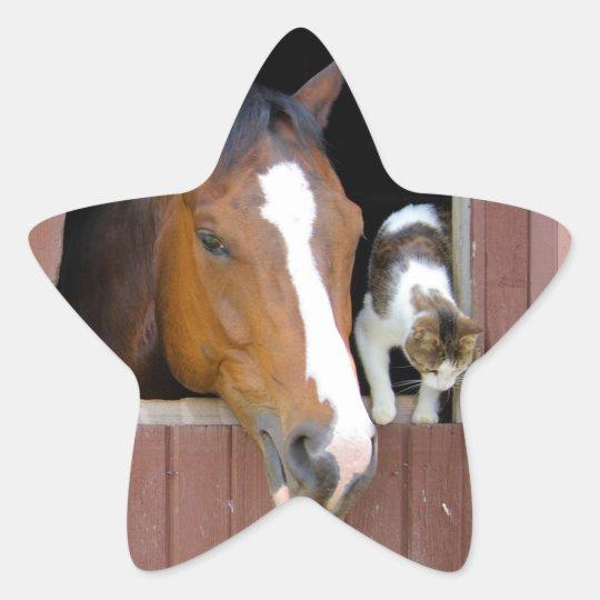 Katze und Pferd - Pferderanch - Pferdeliebhaber Stern-Aufkleber