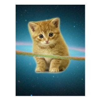 Katze verloren im Raum Postkarte
