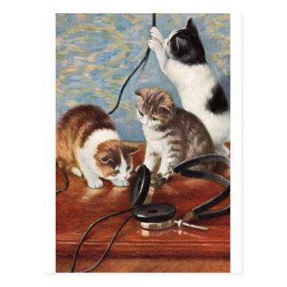 Katze Vintage Postkarte