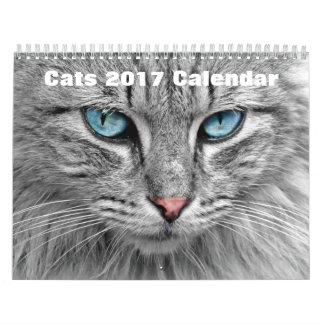 Katzen 2017 kalender