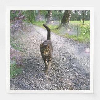 Katzen-Allee Papierservietten