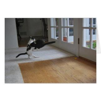 Katzen-Angriff! Karte