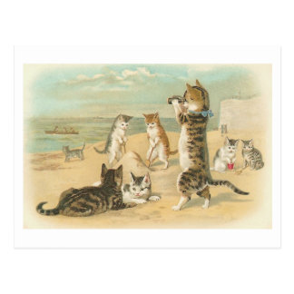 """Katzen auf dem Strand"" Vintage Postkarte"