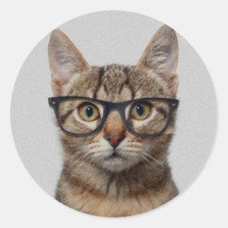 Katzen-Aussenseiter Runder Aufkleber