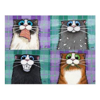 Katzen bis zu keiner guten Postkarte