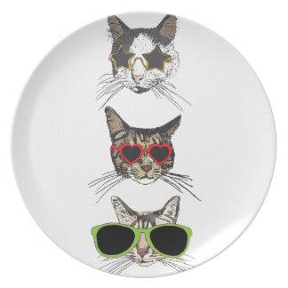 Katzen, die Sonnenbrille tragen Melaminteller