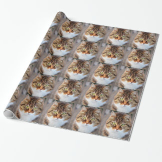 Katzen-Foto Geschenkpapier