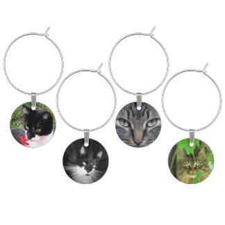Katzen-Fotografie-Vielzahl Weinglas Anhänger