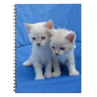 Katzen-Geschenke Spiral Notizblock
