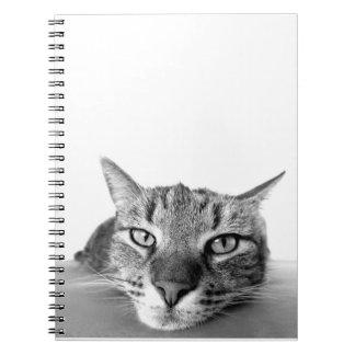 Katzen-Gesichts-Notizbuch Spiral Notizblock