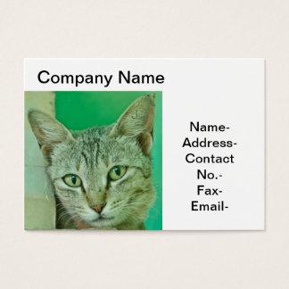 Katzen-/Haustierporträt Visitenkarte