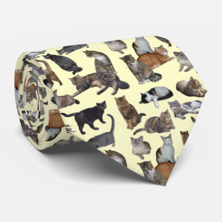Katzen Individuelle Krawatten