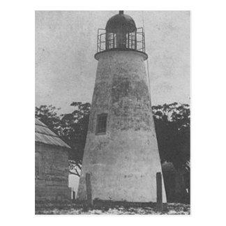 Katzen-Insel-Leuchtturm Postkarte