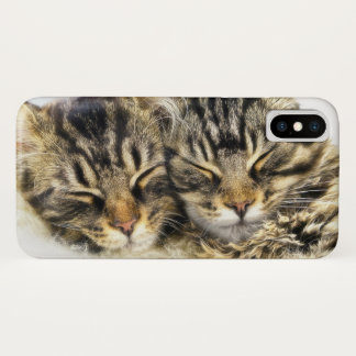 Katzen iPhone X Hülle