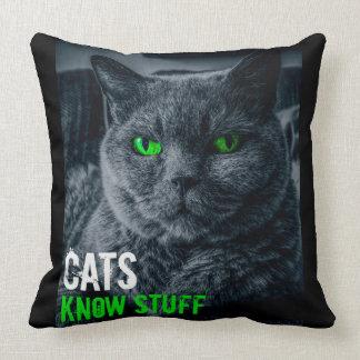 Katzen kennen Material Kissen