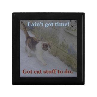 Katzen-Material Erinnerungskiste