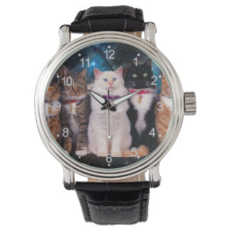 Katzen mit Krägen im Raum Armbanduhr