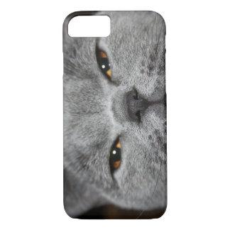 Katzen-Nahaufnahme-Foto iPhone Fall iPhone 8/7 Hülle