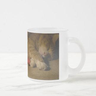 Katzen-Nickerchen Mattglastasse