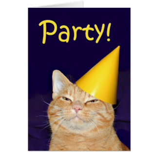 Katzen-Party Einladung